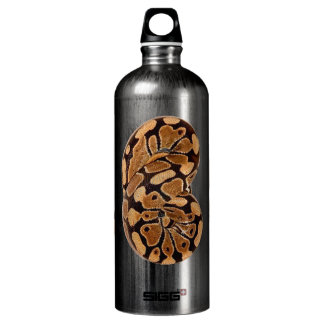 Ball Python Water Bottle