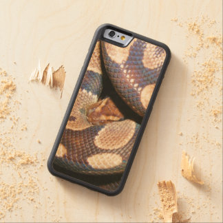 Ball Pythons 2 Carved Maple iPhone 6 Bumper Case