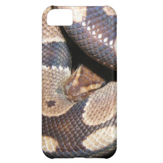 Ball Pythons 2 Cover For iPhone 5C