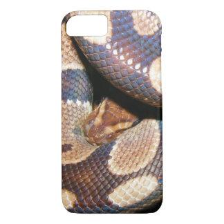 Ball Pythons 2 iPhone 7 Case