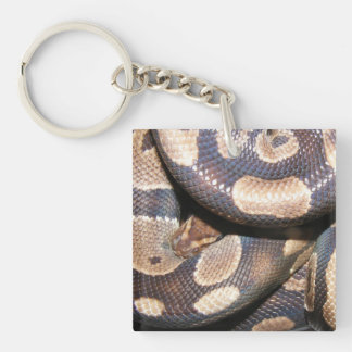 Ball Pythons 2 Single-Sided Square Acrylic Keychain