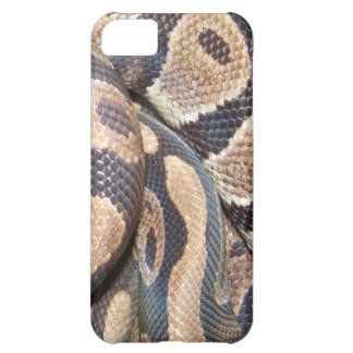 Ball Pythons Cover For iPhone 5C