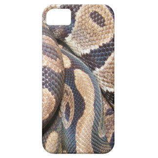Ball Pythons iPhone SE/5/5s Case