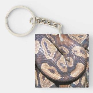 Ball Pythons Single-Sided Square Acrylic Keychain