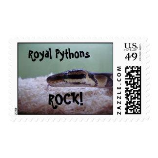 Ball Pythons Postage Stamp
