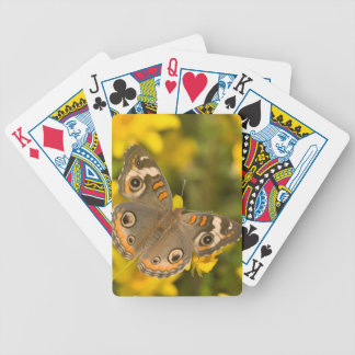 Ballard Nature Center Bicycle Playing Cards