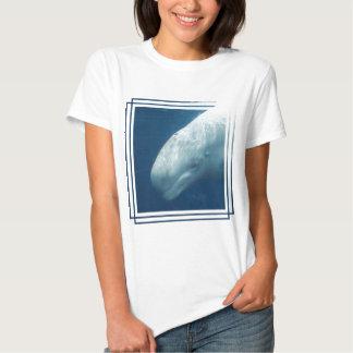 Ballena blanca camisas
