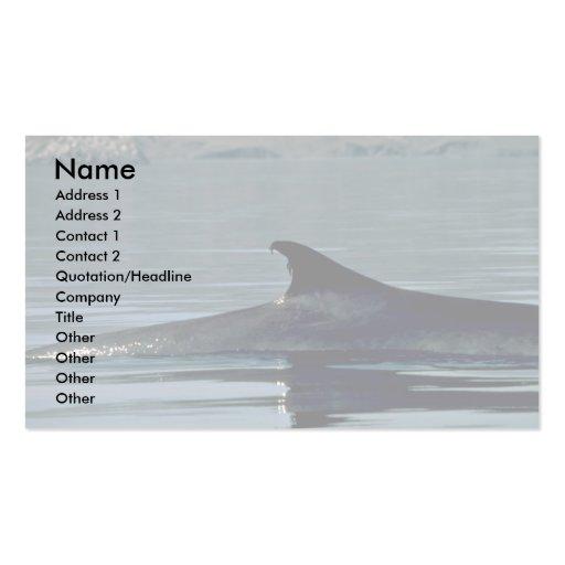 Ballena de aleta, aleta dorsal tarjetas personales