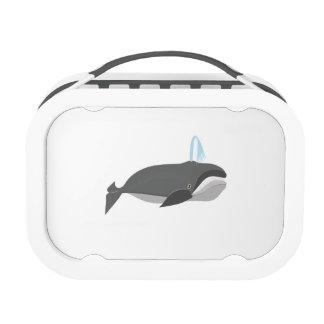 Ballena de Baleen