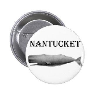 Ballena de esperma de Nantucket Pins