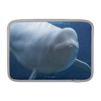 Ballena de la beluga (leucas del Delphinapterus) Funda Para Macbook Air