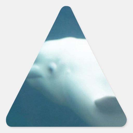Ballena de la beluga pegatina triangular