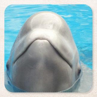 Ballena de la beluga posavasos de cartón cuadrado