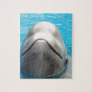 Ballena de la beluga rompecabeza con fotos