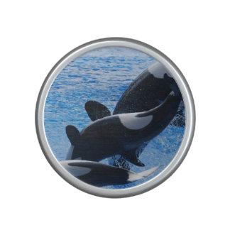 Ballena de la orca altavoz