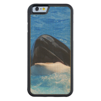 Ballena de la orca funda de iPhone 6 bumper arce