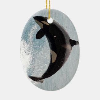 Ballena de la orca de Washington