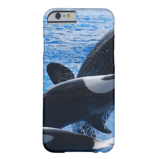Ballena de la orca funda de iPhone 6 barely there