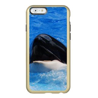 Ballena de la orca funda para iPhone 6 plus incipio feather shine