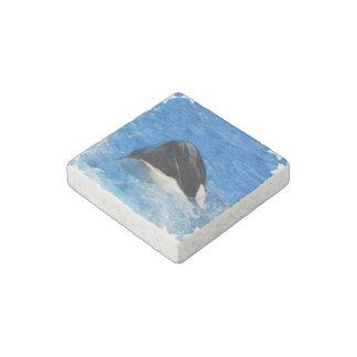 Ballena de la orca imán de piedra