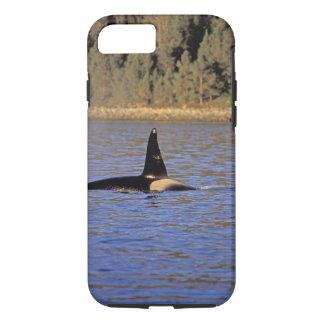 Ballena de la orca o de asesino funda iPhone 7