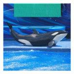 Ballena de la orca que muestra apagado anuncio personalizado