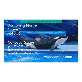 Ballena de la orca que muestra apagado plantillas de tarjetas de visita
