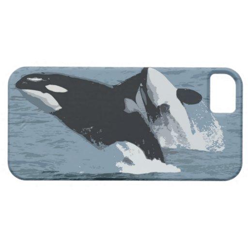 Ballena de Orka iPhone 5 Fundas