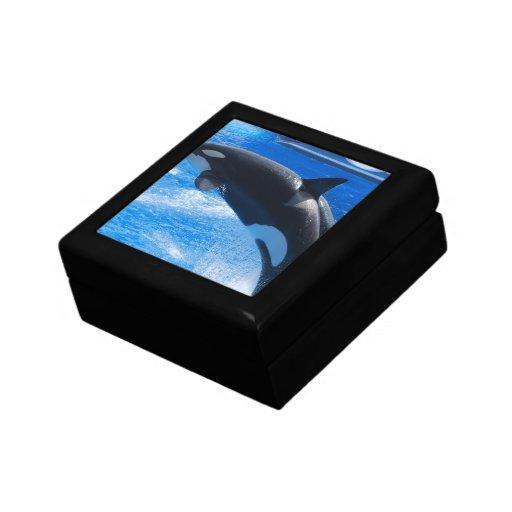 Ballena de salto de la orca caja de regalo
