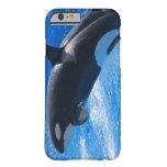 Ballena de salto de la orca funda de iPhone 6 barely there