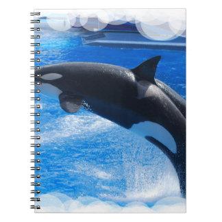 Ballena de salto de la orca libreta