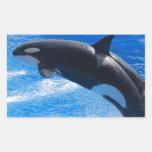 Ballena de salto de la orca rectangular pegatina