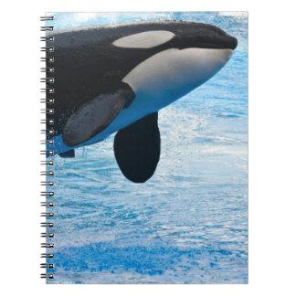 Ballena de un cuaderno del tiempo