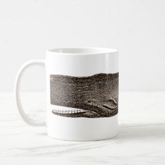 Ballena de una taza 1