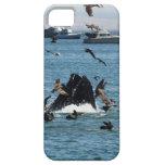 Ballena en el Pacífico iPhone 5 Case-Mate Cobertura