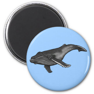 ballena jorobada imán redondo 5 cm