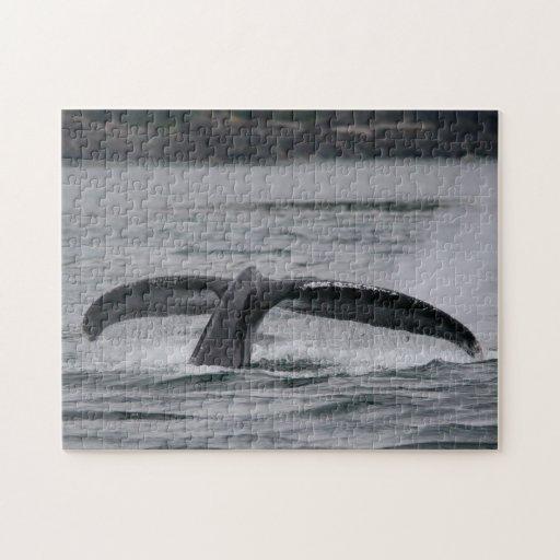 ballena jorobada rompecabeza con fotos