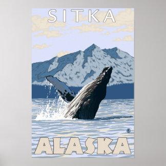 Ballena jorobada - Sitka Alaska Poster