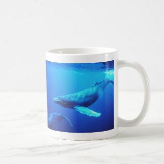 Ballena jorobada taza de café