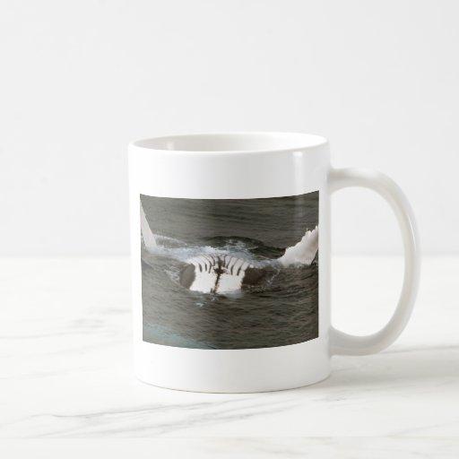 Ballena jorobada tazas de café