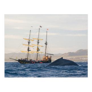 Ballena jorobada y nave postal
