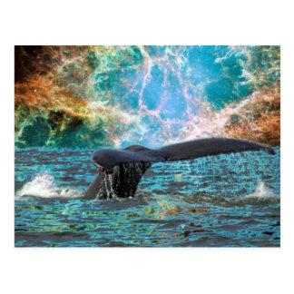Ballena jorobada y supernova tarjetas postales