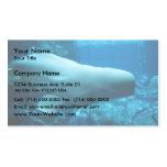 Ballena juguetona linda de la beluga en acuario en plantilla de tarjeta de negocio