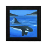 Ballena majestuosa de la orca caja de regalo