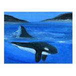 Ballena majestuosa de la orca tarjetas postales