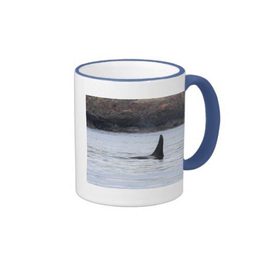 Ballena: Orca residente de la ballena de la orca Tazas