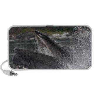 ballena que viola el agua laptop altavoces