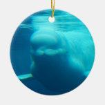 Ballena subacuática de la beluga adornos