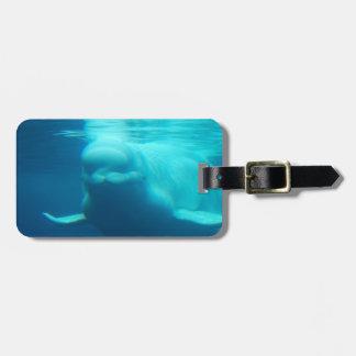 Ballena subacuática de la beluga etiqueta de equipaje