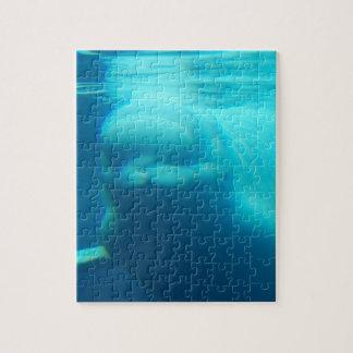 Ballena subacuática de la beluga rompecabeza con fotos